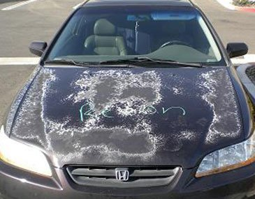 Cost To Repaint A Car >> Auto Painting Collision Repair Auto Painting Services By